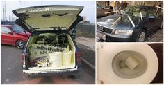 Here are 15 people, who have it worse than you do. I feel so bad for the car with the paint jugs. Harmless Pranks, Worst Day, Inked Magazine, Creative People, Creative Ideas, Life Is Hard, Stuff To Do, I Laughed, Funny Pictures