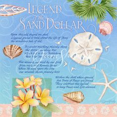 Legend of the Sand Dollar | Tropical/Travel | Jane Shasky