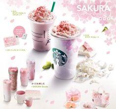 "To drink and Suites ""2013"" SAKURA ""series"" 3/12 using the real Sakura - Spring has come to Starbucks"