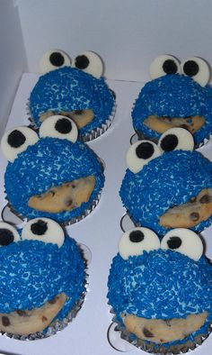 for a Cookie Monster