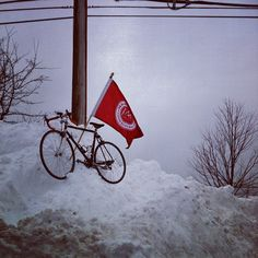 What obstacles have you summited lately? #postnemo