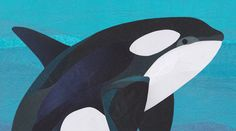 Collage Orca (Killer Whale) illustration by wildlife illustrator, Jonathan Woodward. #Whale #Collage