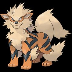 "059-Arcanine,legendary Pokemon. Type-fire. Ability- intimidate or flash fire, justified, hidden ability. Height-6'03"". Weight-341.7 lbs."