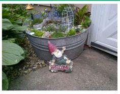 Otro arreglo para jardin