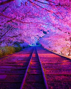 Ideas cute nature pictures beauty for 2019 Sunset Wallpaper, Landscape Wallpaper, Cute Wallpaper Backgrounds, Pretty Wallpapers, Galaxy Wallpaper, Cool Pictures Of Nature, Pretty Pictures, Beautiful Photos Of Nature, Beautiful Suit