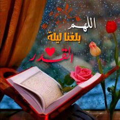 DesertRose,;;Allahumma Aameen,;,