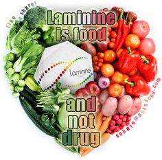 LAMININE IS FOOD AND NOT DRUGS!    Laminine Frequently Asked Questions (FAQ): http://supplementsfood.com/faq