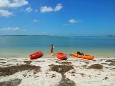 Clearwater Florida.  Kayaking