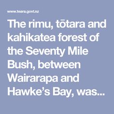 The rimu, tōtara and kahikatea forest of the Seventy Mile Bush, between Wairarapa and Hawke's Bay, was felled by about 1910.