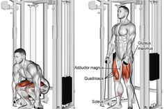 As with the dumbbell squat, you can use the cable squat as your primary quad-dominant exercise if the barbell squat is too hard on your lower back. All Body Workout, Squat Workout, Squat Exercise, Dumbbell Squat, Barbell Squat, Weight Training Workouts, Gym Workouts, Training Exercises, Quadriceps Femoris