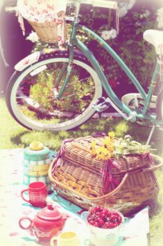 picnic (by lucia and mapp)