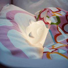 Namještaj i dekoracije za tvoj dom Rose, Flowers, Pink, Roses, Royal Icing Flowers, Flower, Florals, Floral, Blossoms
