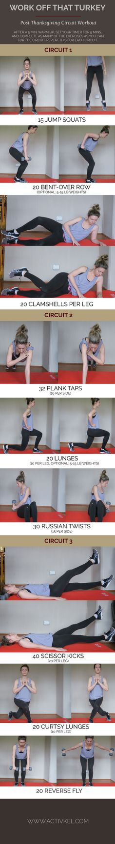 Burn off all the food you ate at Thanksgiving with this circuit workout! These exercises target your abs, legs and arms for a full body workout.