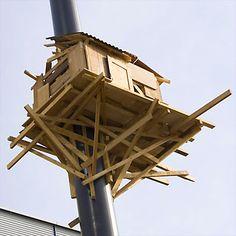 TADASHI KAWAMATA http://www.widewalls.ch/artist/tadashi-kawamata/ #installation #urban #art