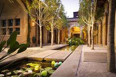 Staggering Koi Ponds decorating ideas for  Patio Mediterranean design ideas with Staggering  alle aquatic garden