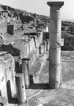 Ferdinando Scianna - Wiew of the archeological city of Solunto(Solunto, Sicily, Italy, 1983.)
