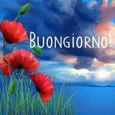 589 Best Buongiorno Images In 2019 Good Morning Good