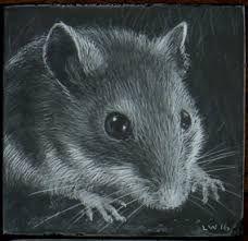 Image result for mouse portrait