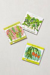 Summer Salad Seed Kit