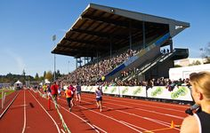 Epic Summer Races in 2014