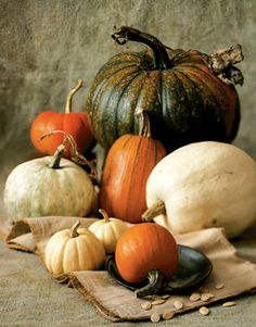 These easy pumpkin recipes are perfect for fall dinner parties or a Halloween feast. Your family will love these fresh pumpkin recipes you can enjoy all fall long for dinner, breakfast, brunch, lunch, and even dessert! Harvest Time, Fall Harvest, Autumn, Gourd Vegetable, Vegetable Recipes, Fresh Pumpkin Recipes, Pumkin Decoration, Pumpkin Colors, Fall Pumpkins