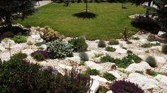 white rock garden- fehér sziklakert
