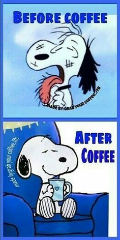 Snoopy before and after coffee! Brought to you for your enjoyment by Just-In-Cas… Snoopy before and after coffee! Snoopy Love, Charlie Brown And Snoopy, Snoopy And Woodstock, I Love Coffee, My Coffee, Morning Coffee, Coffee Menu, Coffee Plant, Coffee Poster