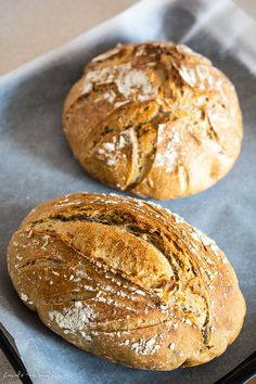 maia naturala Archives | Bucate Aromate Pain Au Levain, Bread, Healthy Recipes, Gluten, Cooking, Food, Health Recipes, Cuisine, Kitchen