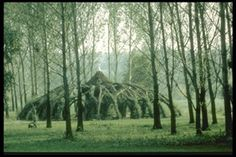 """Living willow architecture by German architect Marcel Kalberer and the Sanfte Strukturen group. The first structure, called the Auerworld Palace, was constructed in 1998, in Aeurstedt, Germany, and was their first """"willow palace"""" project, taking the efforts of 300 volunteers to build."""