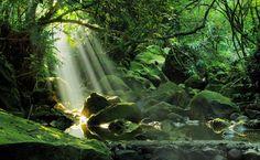 三峽拍照景點 - Yahoo 圖片搜尋結果