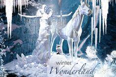 Jetzt wird es Zeit für eine atemberaubende #Weihnachts- und #Winterszenerie. Funkelnder Kunstschnee, vereiste #Schaufensterscheiben, #verschneite #Tannenbäume und künstliche #Schneemänner kreieren tolle #Eiseffekte. www.abama.com #Wintereffekte #Kunstschnee #KunstSchneeflocken #KunstSchneemann #Dekorateure #VisualMerchandising #WinterDecor #ArtificalSnow #ArtificalChristmasTree #abama #Winterdekoration #Schaufensterdekoration