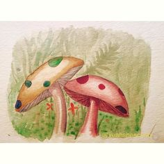 Today's drawing inspired by the giant mushrooms we have. The real life ones aren't as cute though. #mushrooms #garden #yearofcreativehabits #yoch2016 #painting #watercolor #woodland #koiwatercolors #sketch #sketchbook #draw #artistsharing #doodle #supermario #drawing #create #makeart #positivity #motivation #inspiration