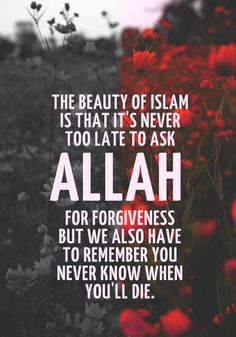 The beauty of Islam is that it's never too late to ask Allah for forgiveness but we also have to remember you never know when you'll die. Forgiveness Quotes, Allah Quotes, Muslim Quotes, Religious Quotes, Quran Quotes, Quotes About Allah, Quran Sayings, Islam Hadith, Allah Islam