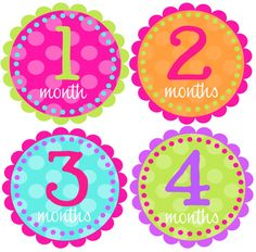 Monthly Baby Girl Stickers-Baby Month Stickers-Great Baby Shower Gift- Monthly Milestone Stickers- Just Born Sticker Included on Etsy, $8.50