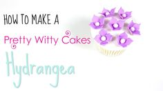 Sample Video of How to Make a Hydrangea by Pretty Witty Cakes