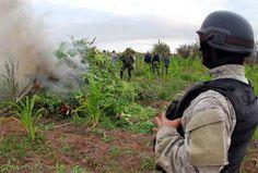 Bolivia presentará una queja ante la ONU por ley estadounidense sobre drogas | Radio Panamericana