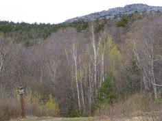 Mt. Monadnock summit, seen from Halfway House clearing. Trail begins on south side of mountain at park entrance on NH 124.