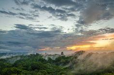 Morning Fog Art Print Tikal