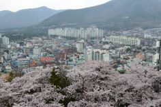 Jinhae from a distance