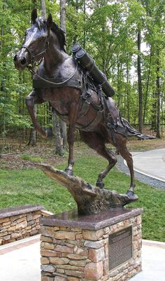"""""""Staff Sargent Reckless"""" by Jocelyn Russell - Bronze Icons Country Magazine, Staff Sergeant, War Dogs, All About Horses, Historical Pictures, Marine Corps, Beautiful Horses, Equestrian, Cute Animals"""