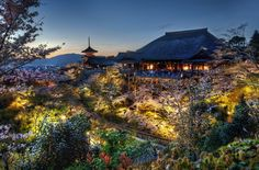 The Treetop Temple, Kyoto