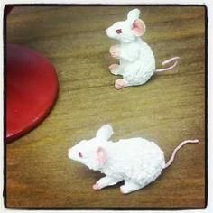 Detalle, ratones de gatitos de Les chats de Dubout