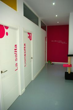 Veterinario gatos sevilla, Somos la única clínica veterinaria exclusiva para gatos de Sevilla. Si quieres una nueva experiencia para tu gato ven y conócenos