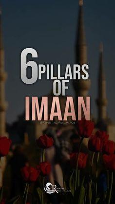 Urdu Quotes, Islamic Quotes, Pillars Of Islam, Quran Recitation, Way Of Life, Feelings, Videos