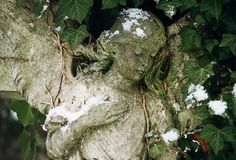 Angel with Ivy in Snow, Abney Park Cemtery, Stoke Newington, London N16