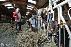 """www.lyonne.fr - Yonne Valley - pobočky (89113) - dále jen """"kozy"""" Odvětví charakteru!"""