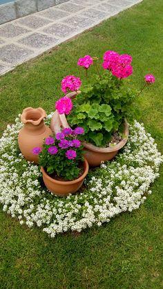 Gardening, Dreams, Indoor Water Garden, Gardens, Powder Room, Plants, Garden Container, Geraniums, Planters