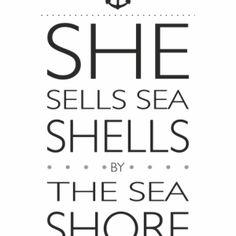 Plakat Seashells / Muszelki NUNU BABA