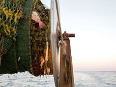 Catch limits for fishermen are often based on where fish have been most abundant in the past. But they have failed to keep up with geographical changes.