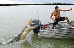 Scariest marine animal ever? Lol I can hear his heart beating..